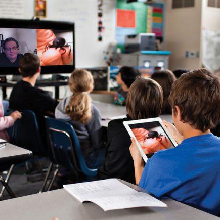 дистанционное обучение в российских школах